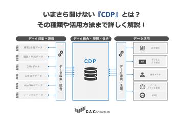 いまさら聞けない『CDP』とは?|その種類や活用方法まで詳しく解説!