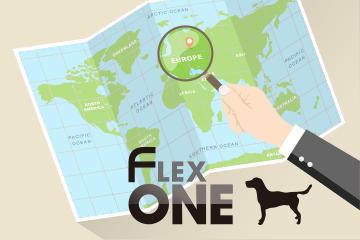 「国・地域ターゲティング機能」とは?FlexOne®による活用方法も詳しく解説