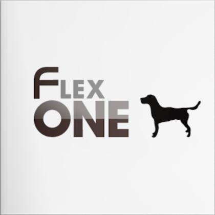 FlexOne® HARRIERのご紹介