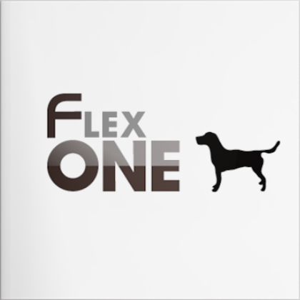 FlexOne® HARRIERのご紹介